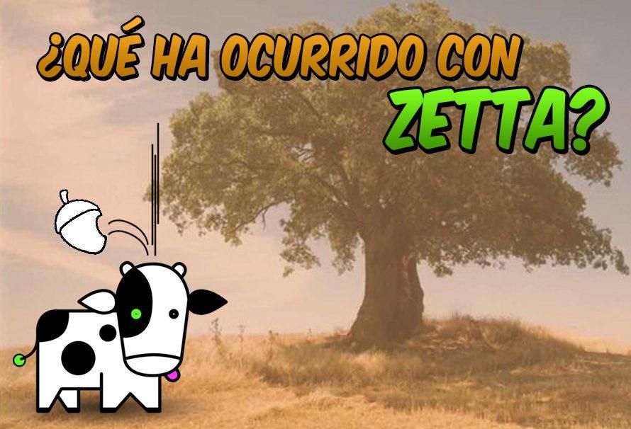 ¿Qué ha ocurrido con Zetta?