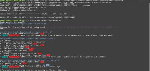 vulnerabilidad procesadores